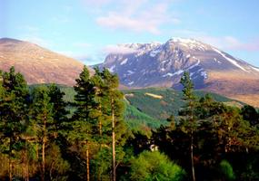 Cedar Lodge is one of the closest self catering places to Fort William's downhill mountain biking tracks and winter skiing/snowboarding at Nevis Ra...