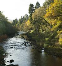 The River Garry by Invergarry