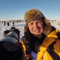 This autumn join multi-award winning wildlife cameraman Doug Allan for an evening of behind the scenes stories in a s...
