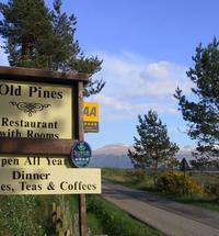 Old Pines is a restaurant with rooms at Spean which enjoys a particularly good setting just north of the village but within walking distance of the...