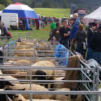 Box august lochaber show 09 pentax 039