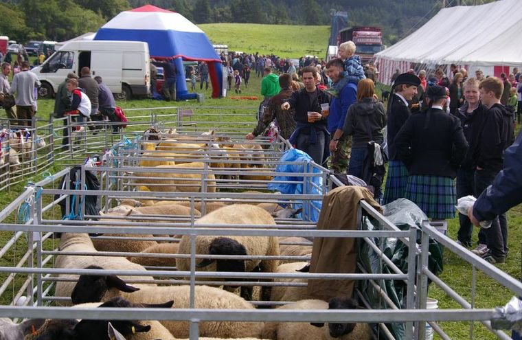 Feature august lochaber show 09 pentax 039
