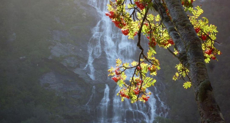 Steall Falls, Glen Nevis