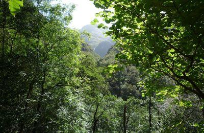 Upper Glen Nevis