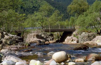 The bridge over the Lower Falls