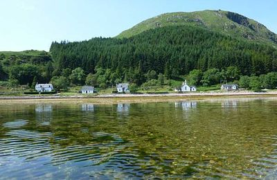 Little holiday cottages all in a row