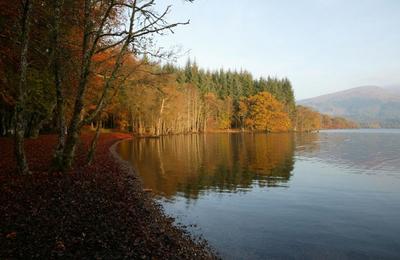 Fabulous beechwoods and Loch Lochy