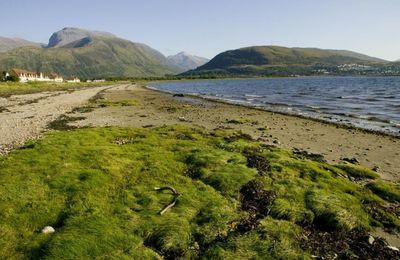 Caol waterfront