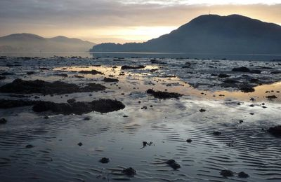 Low tide on Loch Linnhe