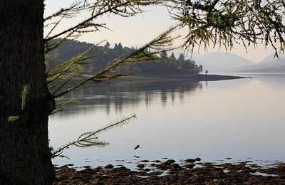 Loch Eil from Linnhe Lochside Holidays