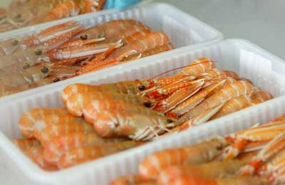 Sea food producers