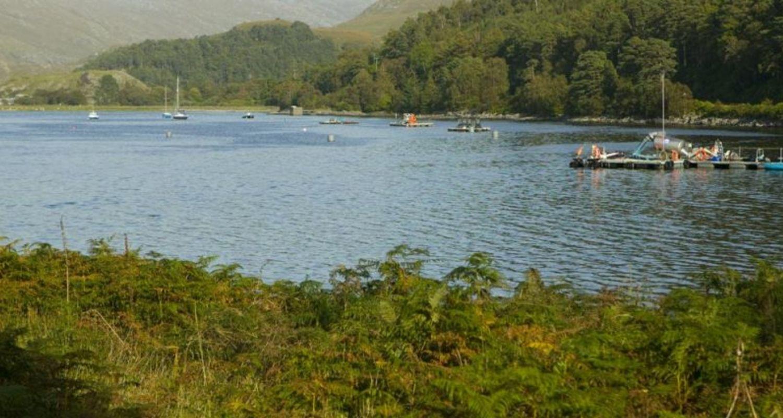 Fish Farming, Loch Ailort