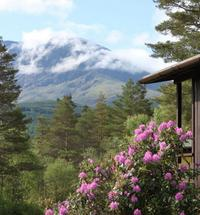 Great Glen Holidays is a wonderful place to stay in one of our comfortable self catering lodges on our working highland farm at Torlundy. We enjo...