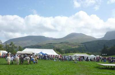 Ponies at Torlundy Show
